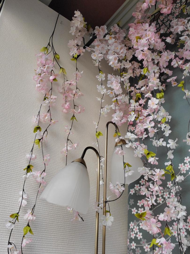 桜ディスプレイ